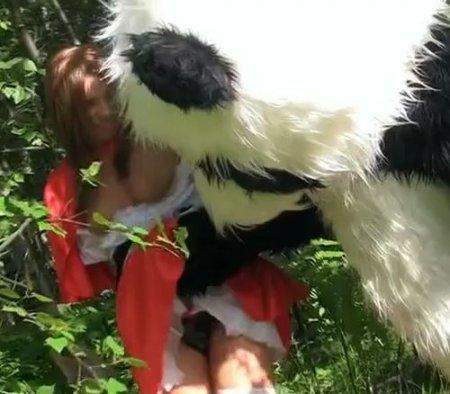 Большая русская панда поймала и выебала в лесу красную шапочку